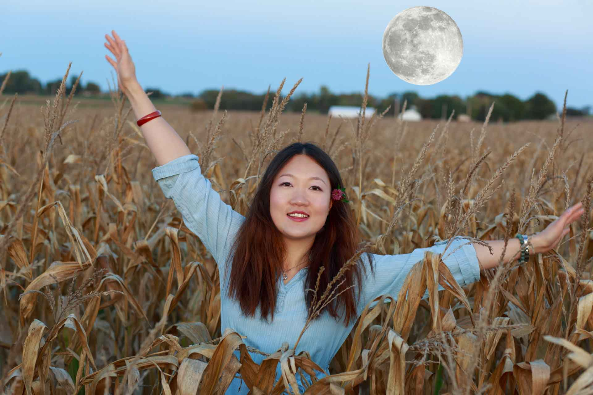Moonrise over the corn field